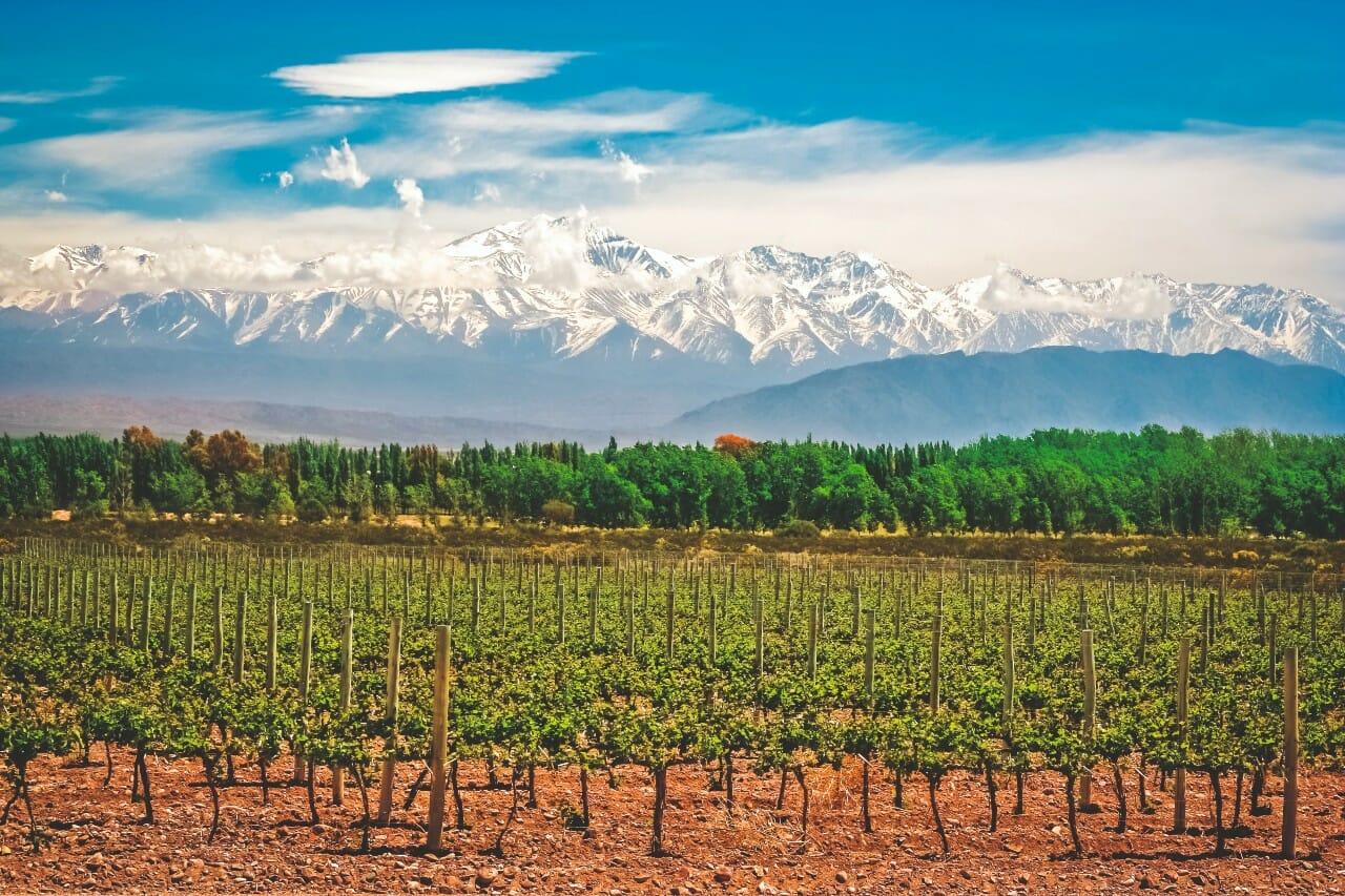 Mendoza Argentinien